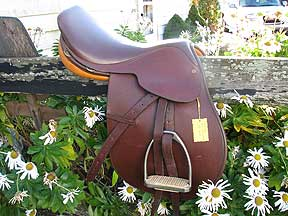 Cambridge English Saddle