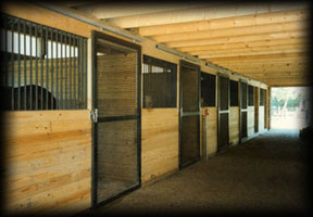 Photo of box stalls